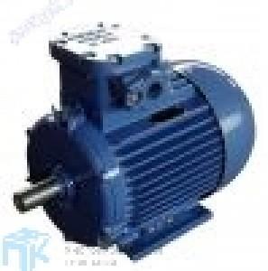 АИММ 280S2 Взрывозащищенный электродвигатель